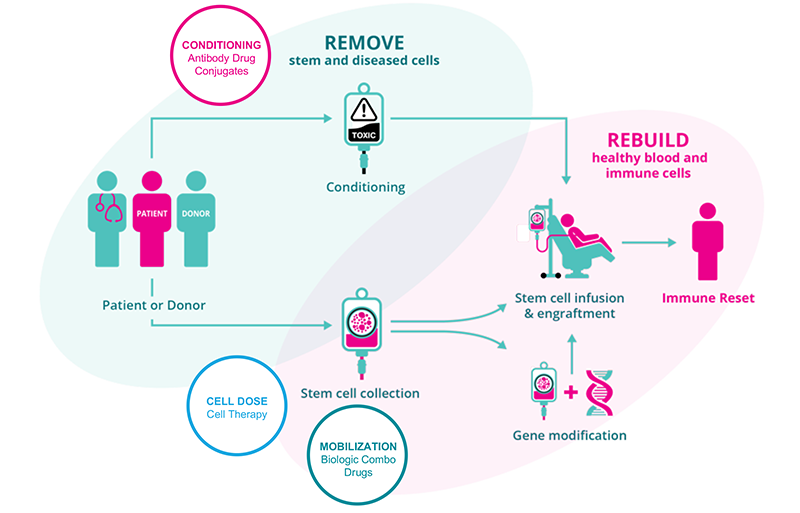 Magenta Therapeutics Patient Journey